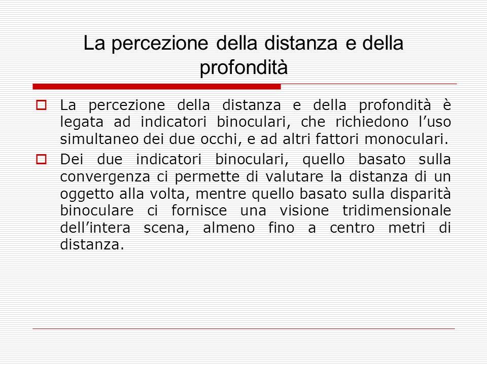 La percezione della distanza e della profondità La percezione della distanza e della profondità è legata ad indicatori binoculari, che richiedono luso