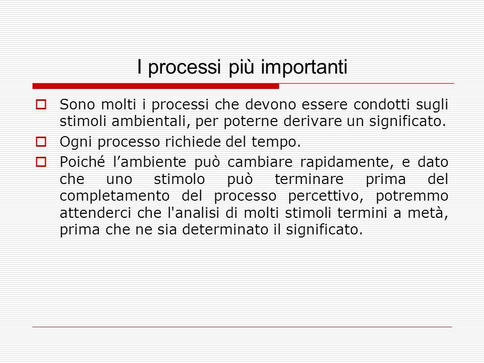I processi più importanti Sono molti i processi che devono essere condotti sugli stimoli ambientali, per poterne derivare un significato. Ogni process