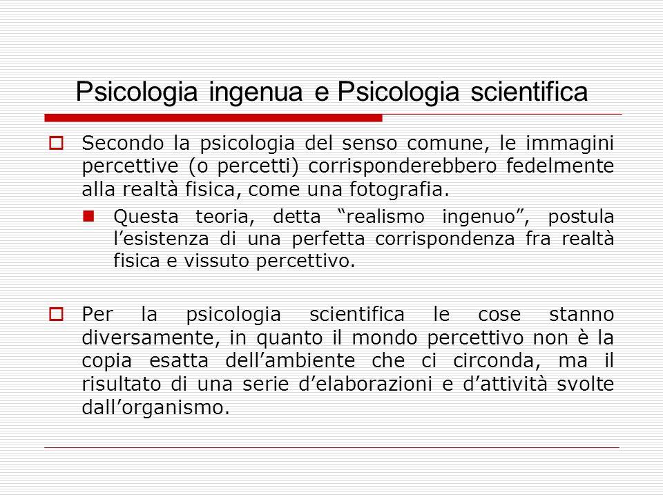 Psicologia ingenua e Psicologia scientifica Secondo la psicologia del senso comune, le immagini percettive (o percetti) corrisponderebbero fedelmente