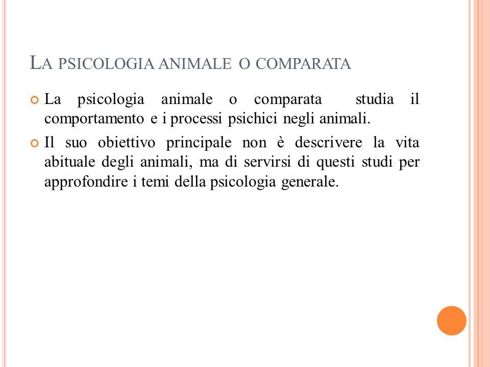 L A PSICOLOGIA ANIMALE O COMPARATA La psicologia animale o comparata studia il comportamento e i processi psichici negli animali. Il suo obiettivo pri