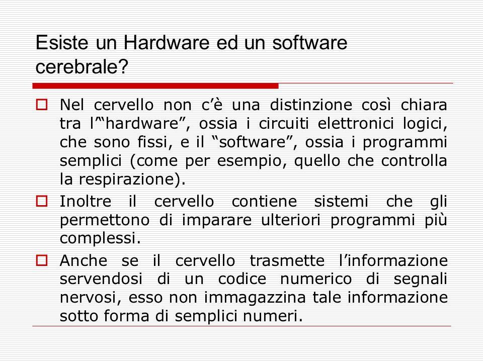 Esiste un Hardware ed un software cerebrale? Nel cervello non cè una distinzione così chiara tra lhardware, ossia i circuiti elettronici logici, che s