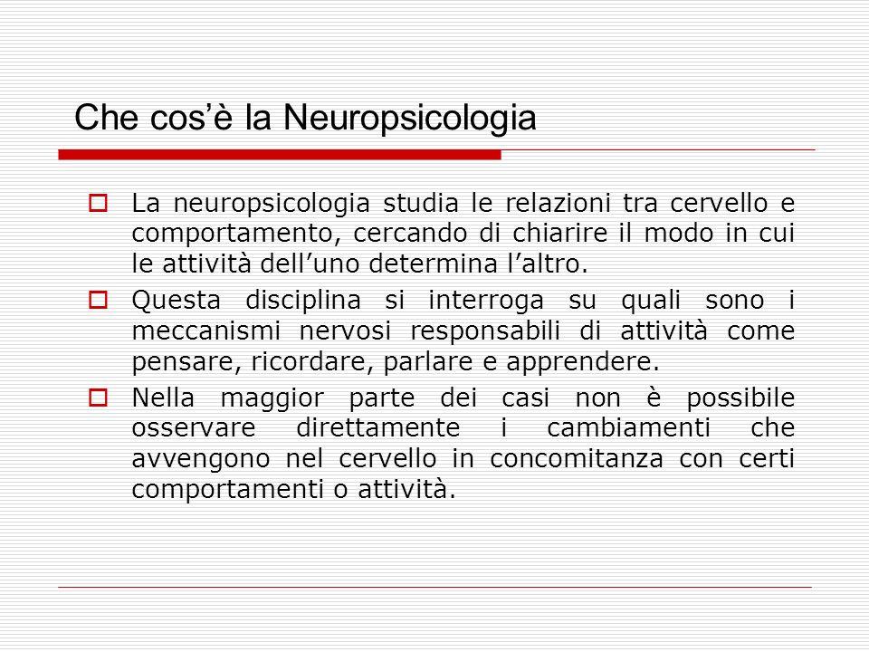 Che cosè la Neuropsicologia La neuropsicologia studia le relazioni tra cervello e comportamento, cercando di chiarire il modo in cui le attività delluno determina laltro.