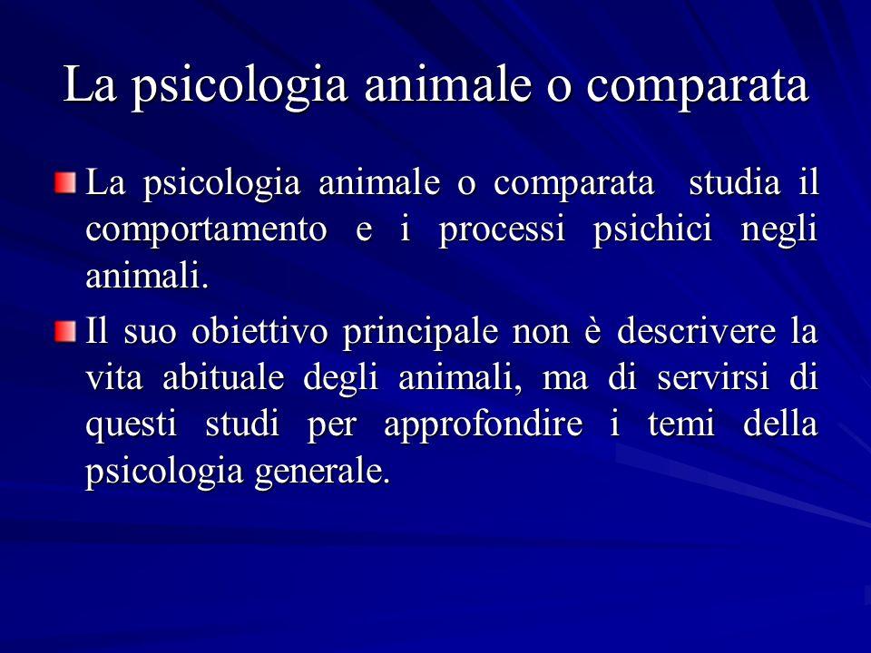 La psicologia animale o comparata La psicologia animale o comparata studia il comportamento e i processi psichici negli animali. Il suo obiettivo prin