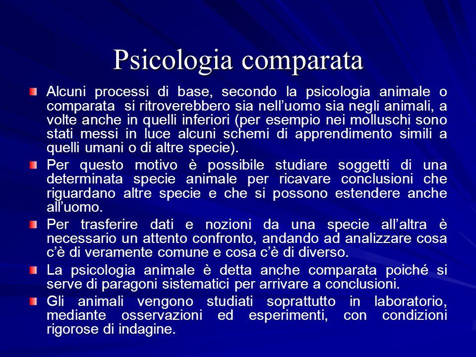 Psicologia comparata Alcuni processi di base, secondo la psicologia animale o comparata si ritroverebbero sia nelluomo sia negli animali, a volte anch