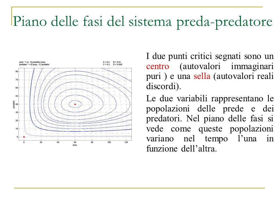 Piano delle fasi del sistema preda-predatore I due punti critici segnati sono un centro (autovalori immaginari puri ) e una sella (autovalori reali di