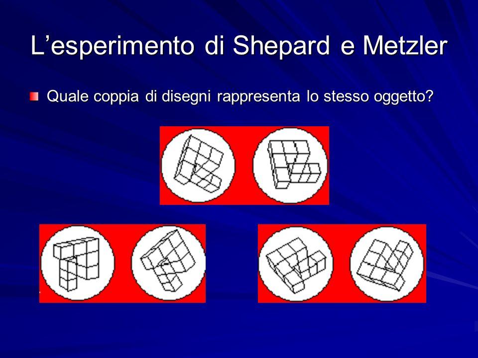 Lesperimento di Shepard e Metzler Quale coppia di disegni rappresenta lo stesso oggetto?