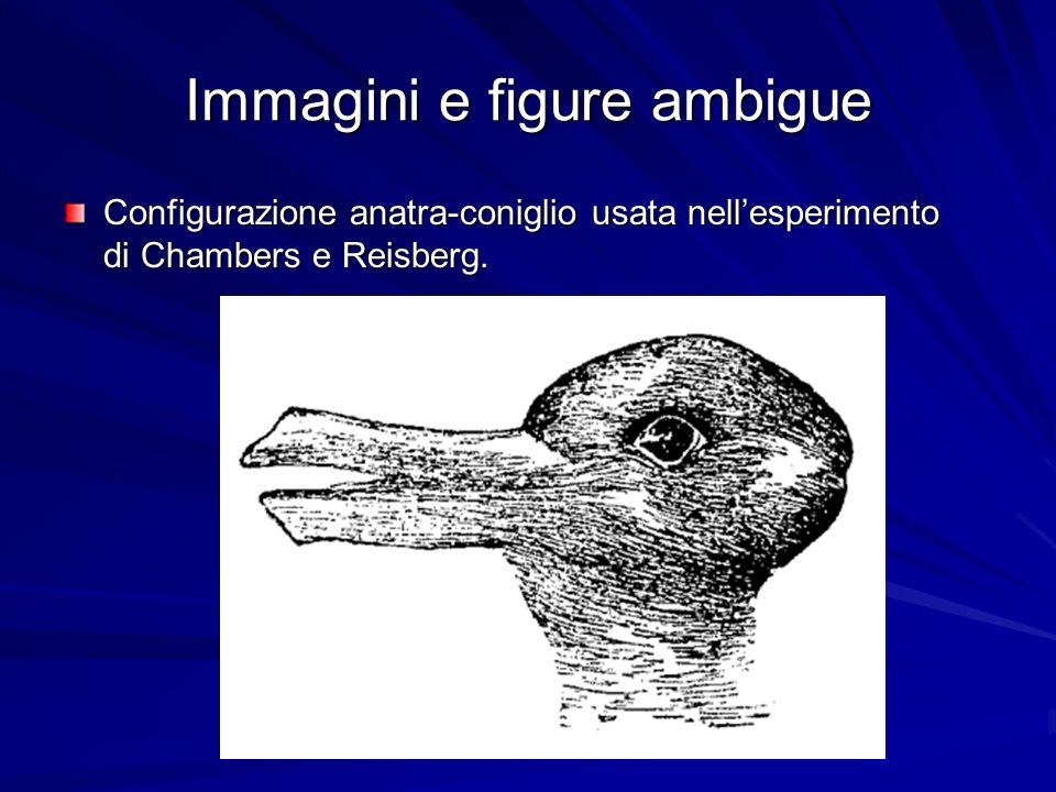Immagini e figure ambigue Configurazione anatra-coniglio usata nellesperimento di Chambers e Reisberg.