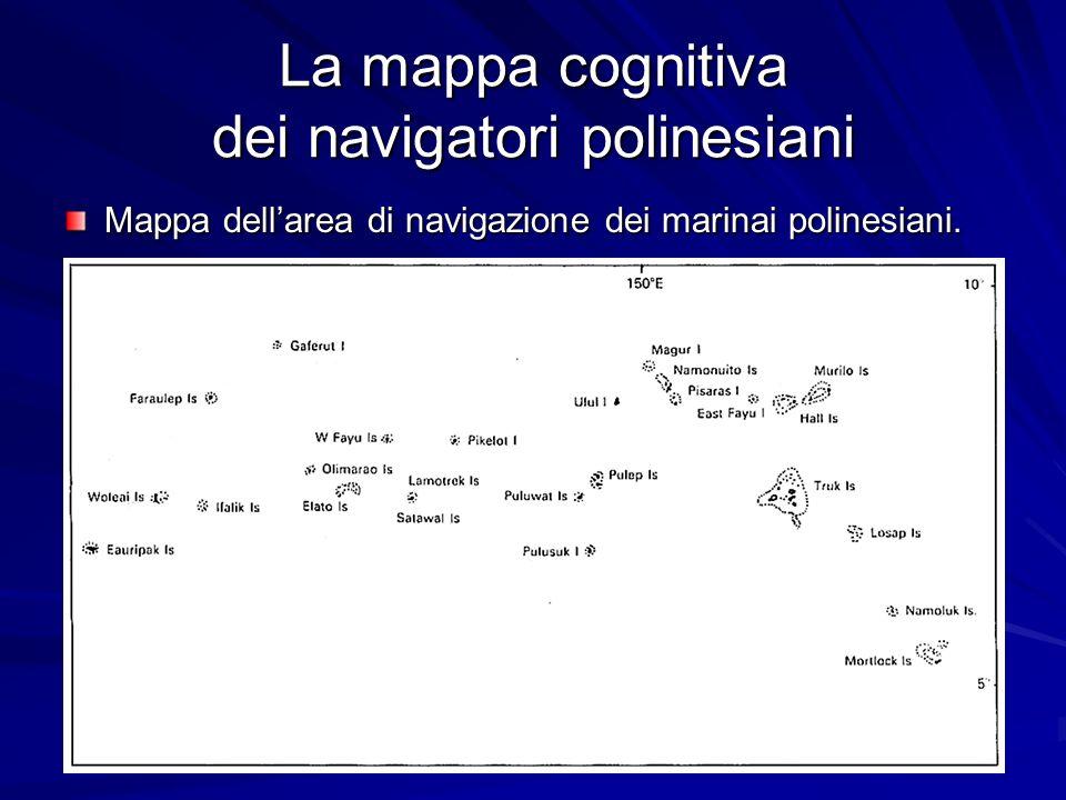 La mappa cognitiva dei navigatori polinesiani Mappa dellarea di navigazione dei marinai polinesiani.