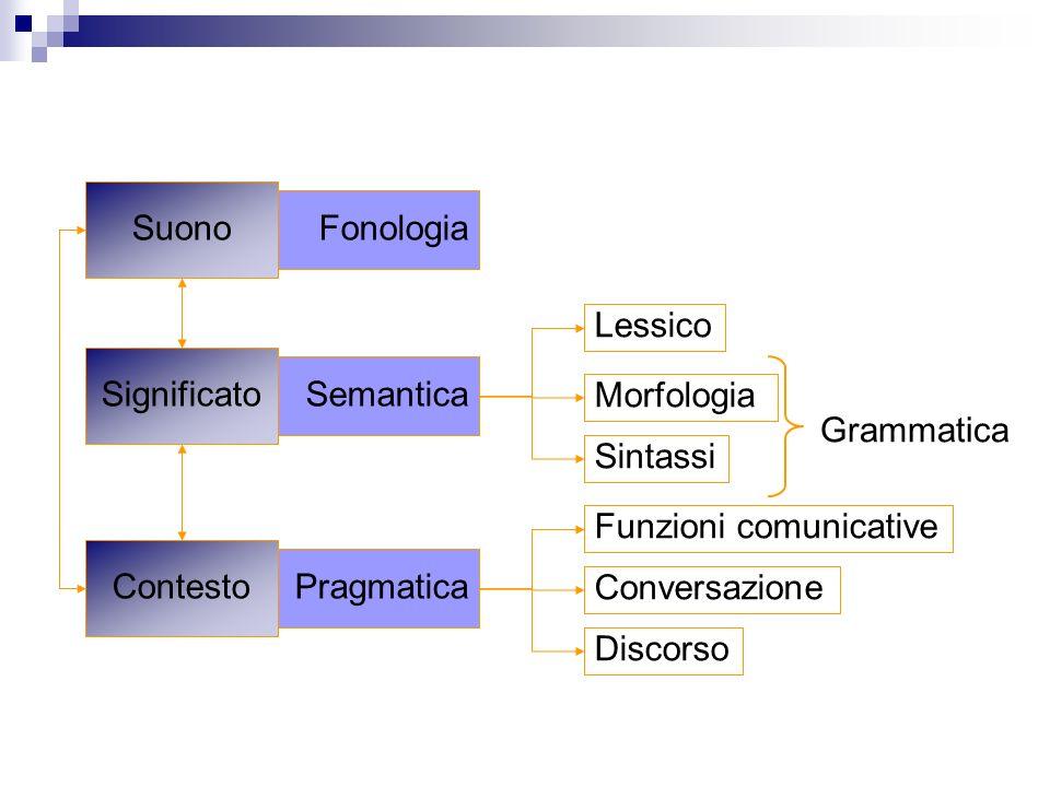 Pragmatica Semantica Fonologia Suono Significato Contesto Lessico Morfologia Sintassi Grammatica Conversazione Funzioni comunicative Discorso