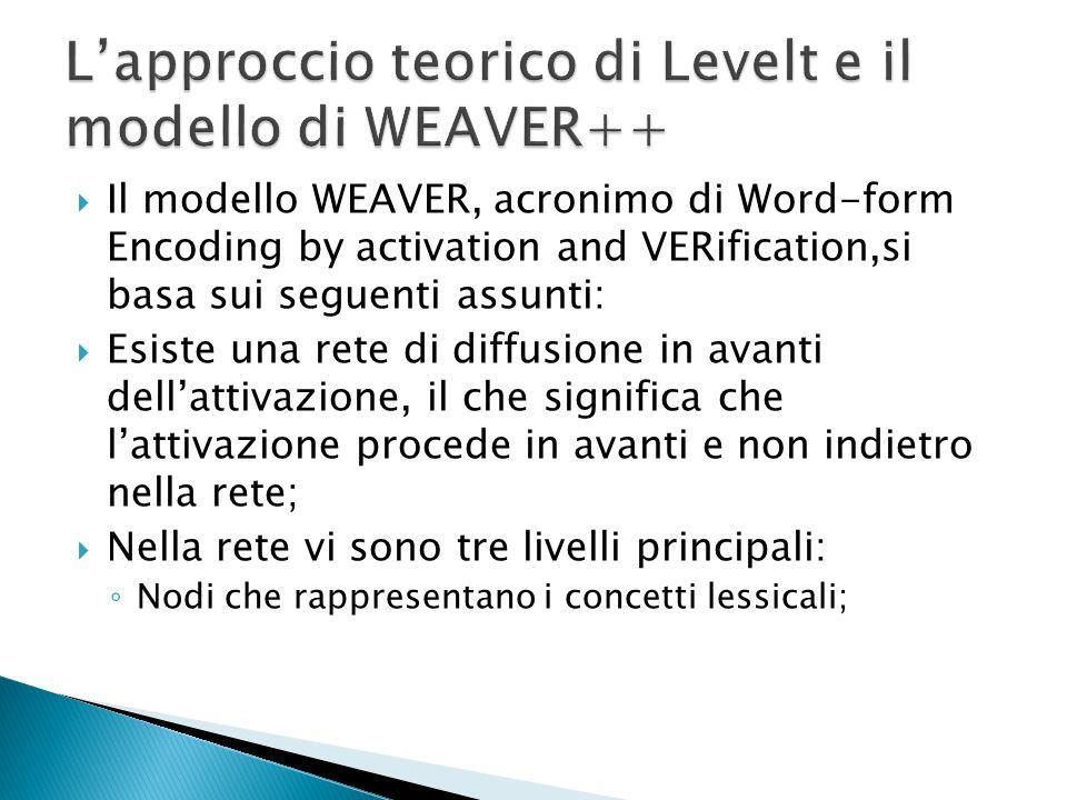 Il modello WEAVER, acronimo di Word-form Encoding by activation and VERification,si basa sui seguenti assunti: Esiste una rete di diffusione in avanti