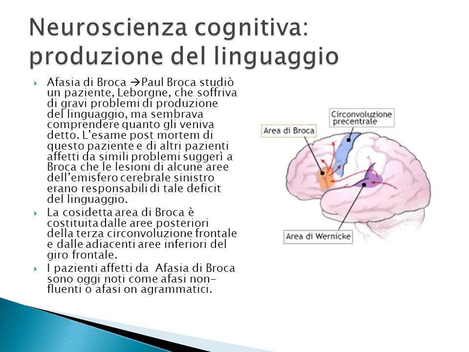 Afasia di Broca Paul Broca studiò un paziente, Leborgne, che soffriva di gravi problemi di produzione del linguaggio, ma sembrava comprendere quanto g