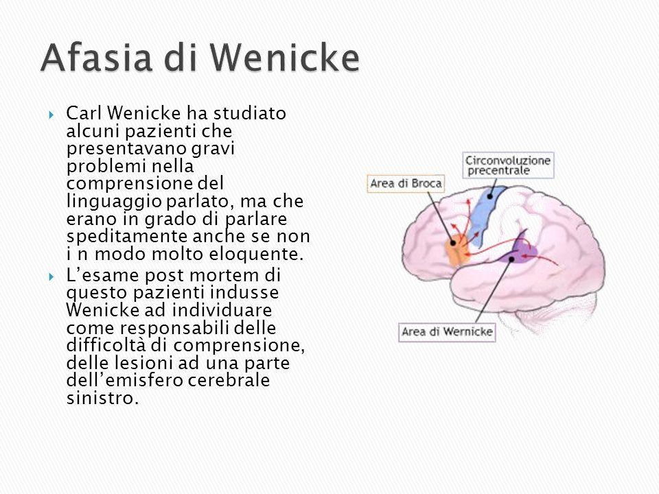 Carl Wenicke ha studiato alcuni pazienti che presentavano gravi problemi nella comprensione del linguaggio parlato, ma che erano in grado di parlare s