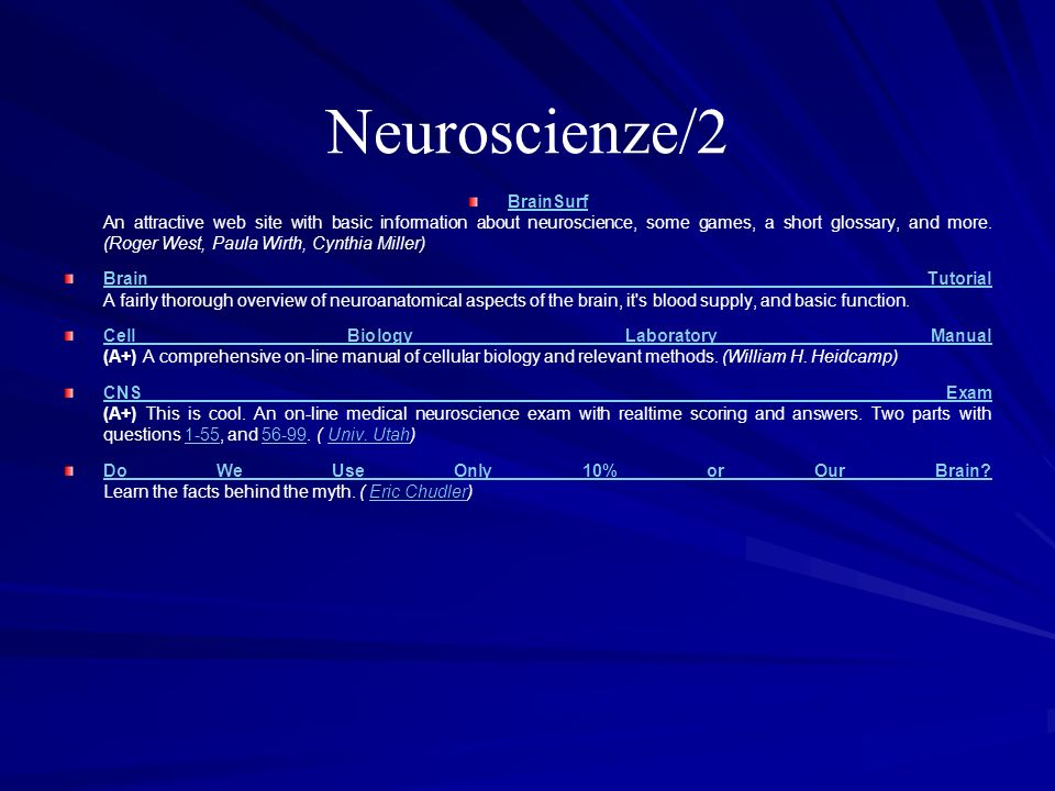 Neuroscienze/2 BrainSurf BrainSurf An attractive web site with basic information about neuroscience, some games, a short glossary, and more. (Roger We