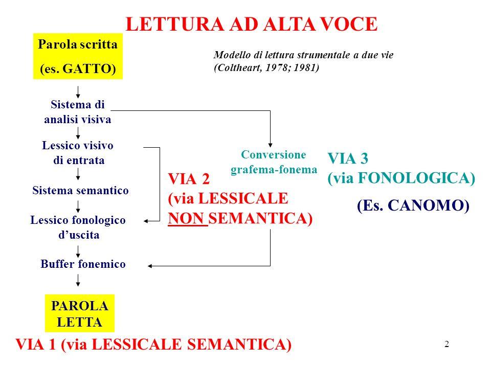 2 LETTURA AD ALTA VOCE Parola scritta (es. GATTO) Sistema di analisi visiva Lessico visivo di entrata Sistema semantico Lessico fonologico duscita Buf