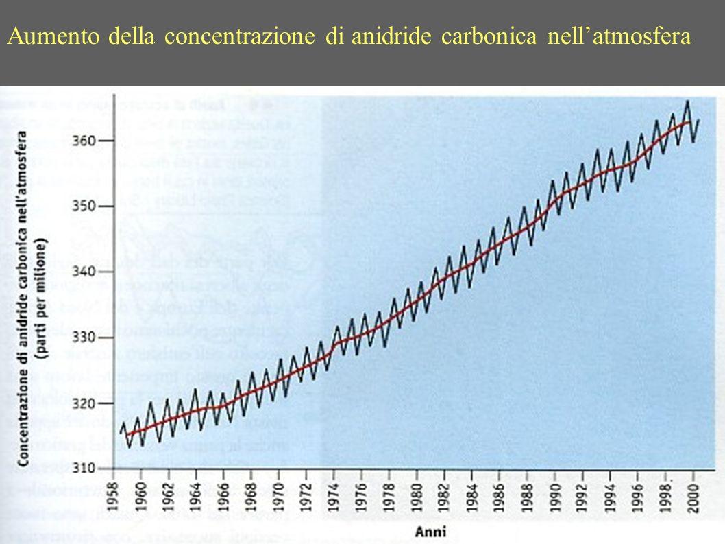 Aumento della concentrazione di anidride carbonica nellatmosfera