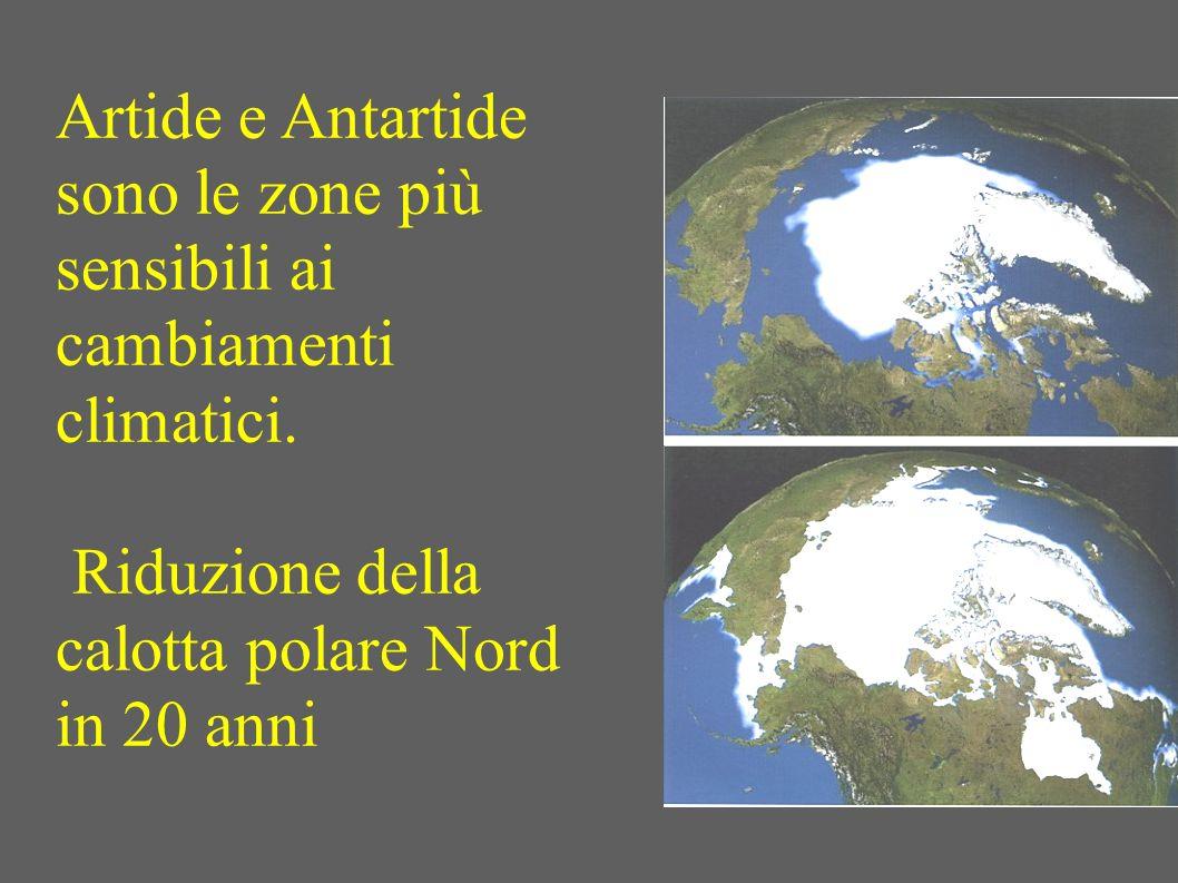 Artide e Antartide sono le zone più sensibili ai cambiamenti climatici. Riduzione della calotta polare Nord in 20 anni