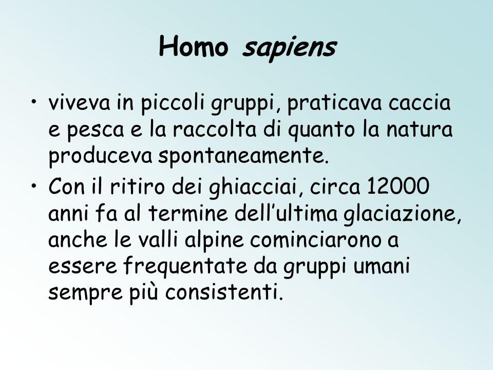 Il museo allaperto A Montale di Castelnuovo Rangone, a pochi chilometri da Modena, potete visitare un museo allaperto dove è stato ricostruito un villaggio delle terremare delletà del Bronzo.