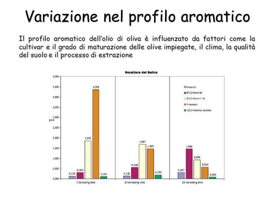 Variazione nel profilo aromatico Il profilo aromatico dellolio di oliva è influenzato da fattori come la cultivar e il grado di maturazione delle olive impiegate, il clima, la qualità del suolo e il processo di estrazione