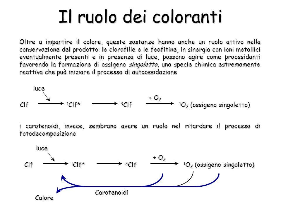Il ruolo dei coloranti Oltre a impartire il colore, queste sostanze hanno anche un ruolo attivo nella conservazione del prodotto: le clorofille e le feofitine, in sinergia con ioni metallici eventualmente presenti e in presenza di luce, possono agire come proossidanti favorendo la formazione di ossigeno singoletto, una specie chimica estremamente reattiva che può iniziare il processo di autoossidazione i carotenoidi, invece, sembrano avere un ruolo nel ritardare il processo di fotodecomposizione Clf 1 Clf* 3 Clf 1 O 2 (ossigeno singoletto) + O 2 luce Clf 1 Clf* 3 Clf 1 O 2 (ossigeno singoletto) + O 2 luceCarotenoidi Calore