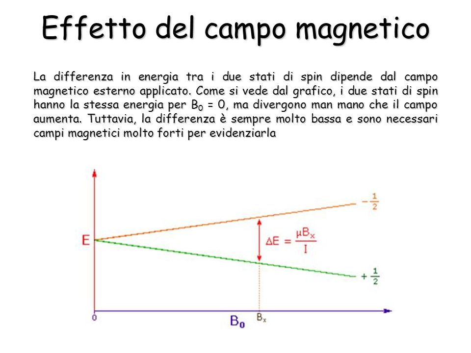 La differenza in energia tra i due stati di spin dipende dal campo magnetico esterno applicato.