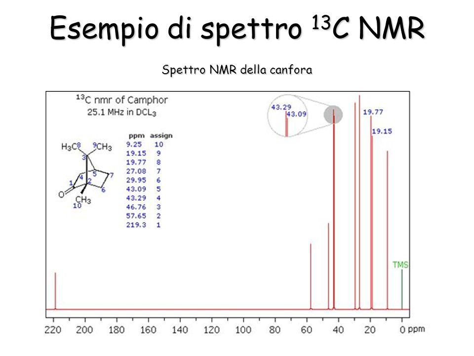 Esempio di spettro 13 C NMR Spettro NMR della canfora