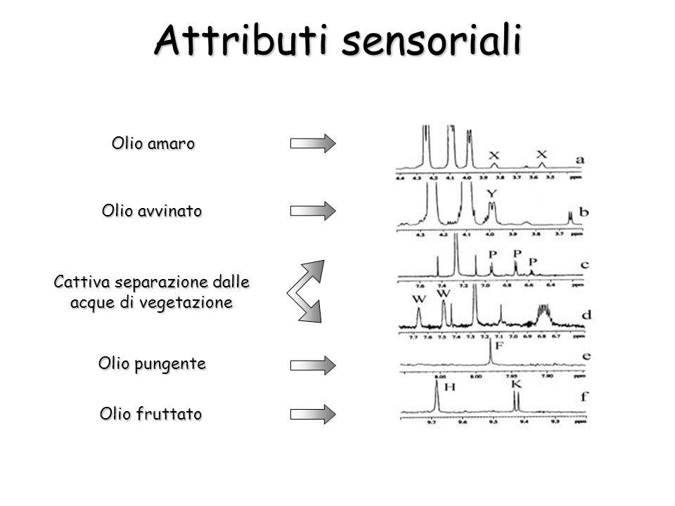 Attributi sensoriali Olio amaro Olio avvinato Cattiva separazione dalle acque di vegetazione Olio pungente Olio fruttato