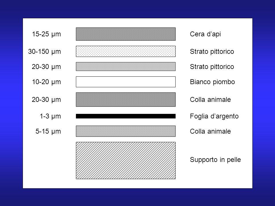 15-25 µm 30-150 µm 20-30 µm 10-20 µm 20-30 µm 1-3 µm 5-15 µm Cera dapi Strato pittorico Bianco piombo Colla animale Foglia dargento Colla animale Supporto in pelle