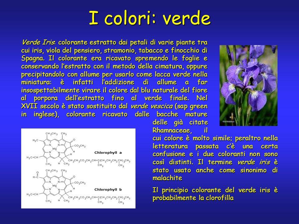 I colori: verde Verde Iris: colorante estratto dai petali di varie piante tra cui iris, viola del pensiero, stramonio, tabacco e finocchio di Spagna.