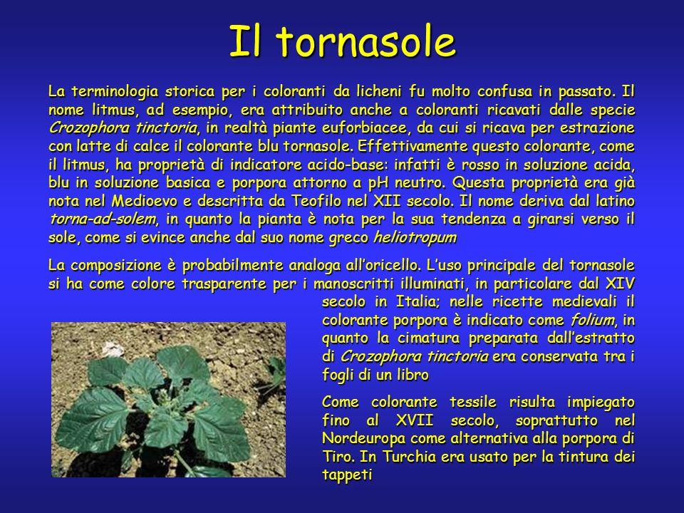 Il tornasole La terminologia storica per i coloranti da licheni fu molto confusa in passato.
