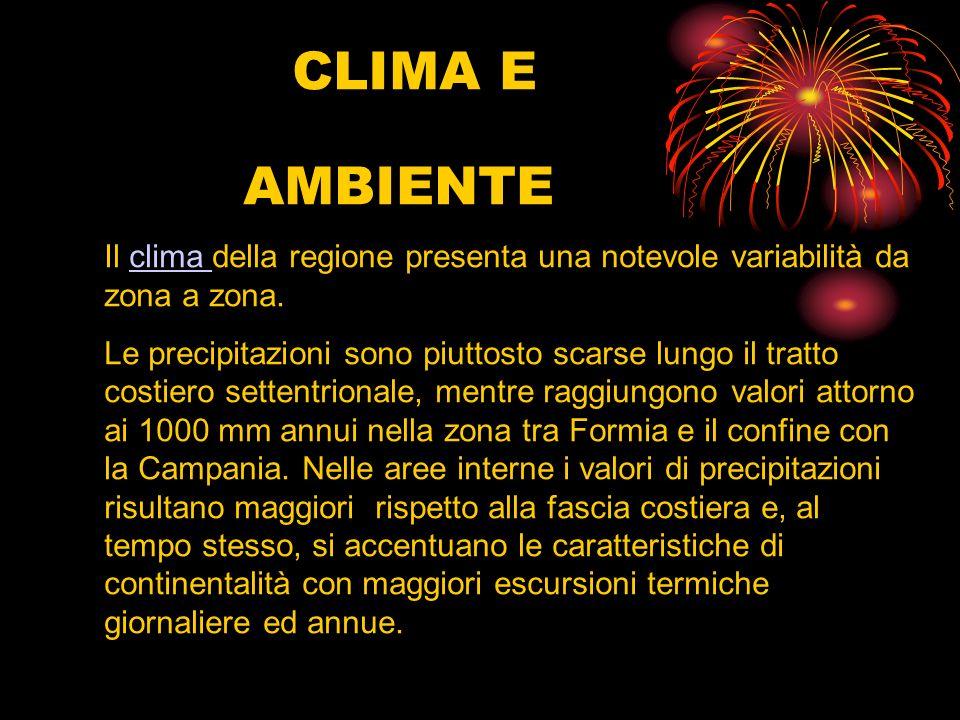 CLIMA E AMBIENTE Il clima della regione presenta una notevole variabilità da zona a zona.clima Le precipitazioni sono piuttosto scarse lungo il tratto