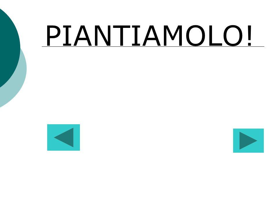 PIANTIAMOLO!