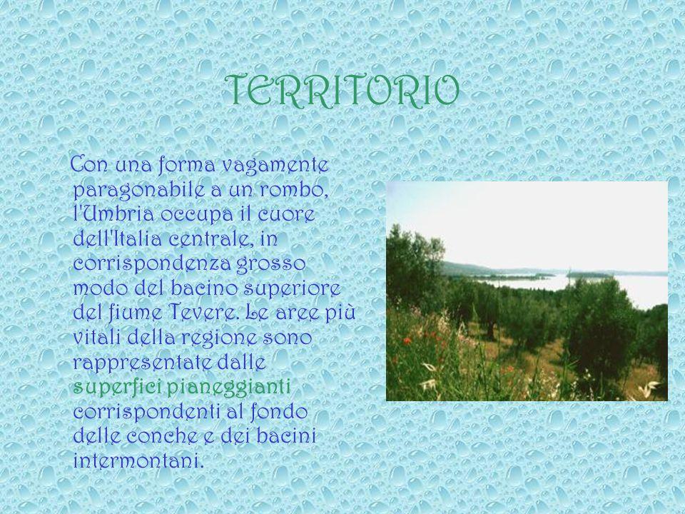TERRITORIO Con una forma vagamente paragonabile a un rombo, l Umbria occupa il cuore dell Italia centrale, in corrispondenza grosso modo del bacino superiore del fiume Tevere.