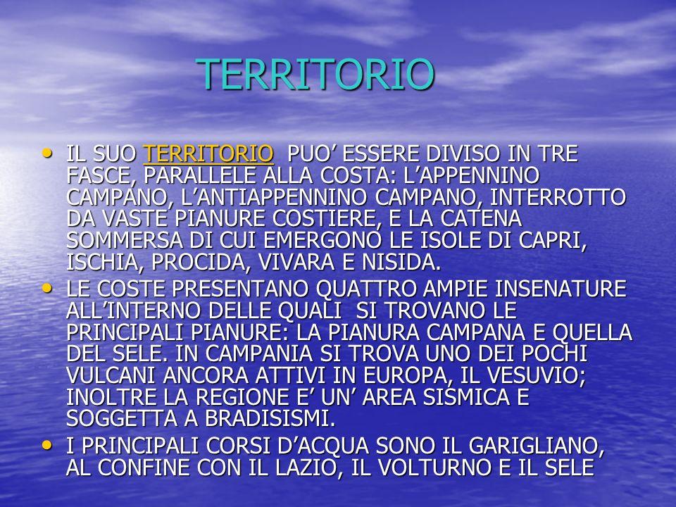 TERRITORIO IL SUO TERRITORIO PUO ESSERE DIVISO IN TRE FASCE, PARALLELE ALLA COSTA: LAPPENNINO CAMPANO, LANTIAPPENNINO CAMPANO, INTERROTTO DA VASTE PIA
