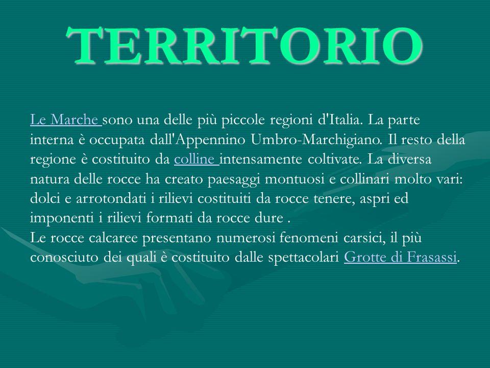 TERRITORIO Le Marche Le Marche sono una delle più piccole regioni d'Italia. La parte interna è occupata dall'Appennino Umbro-Marchigiano. Il resto del