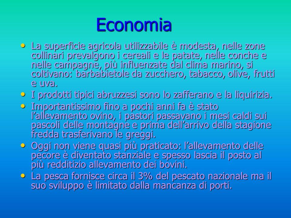 Pochi sono gli insediamenti industriali di grandi dimensioni, pochi sono gli stabilimenti della FIAT di Sulmona o gli impianti chimici di Chieti e Pescara, che occupano però un quinto degli addetti al settore secondario di tutta la regione.