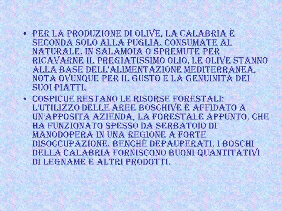 TUTTAVIA, La Calabria è la seconda produttrice in Italia di agrumi (dopo la Sicilia; in particolare ha il primato per le clementine, i cedri e i berga