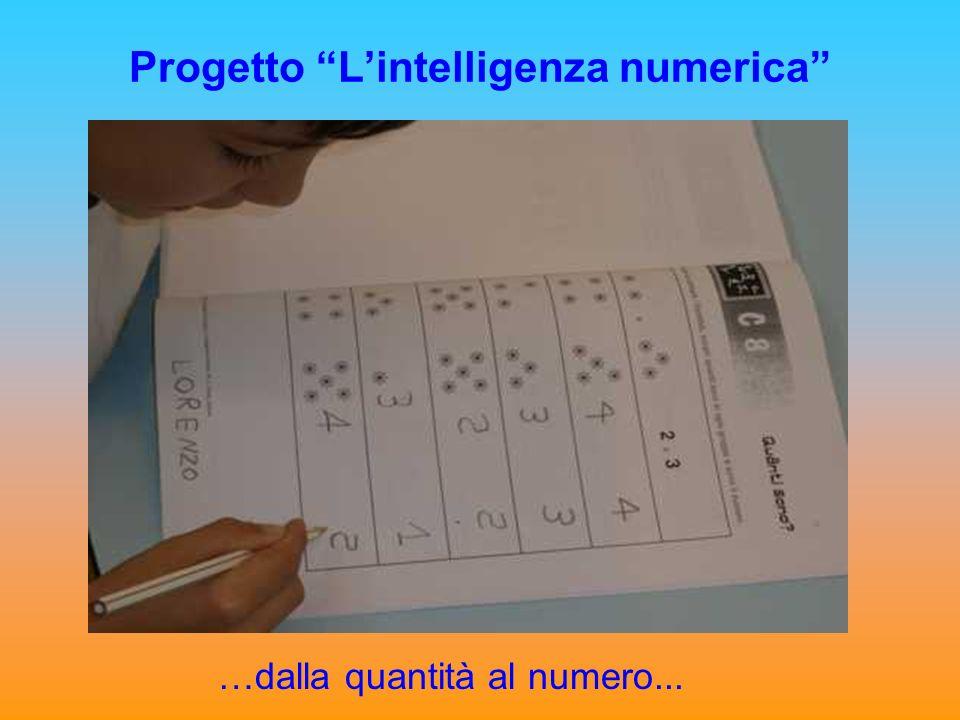 Progetto Lintelligenza numerica …dalla quantità al numero...