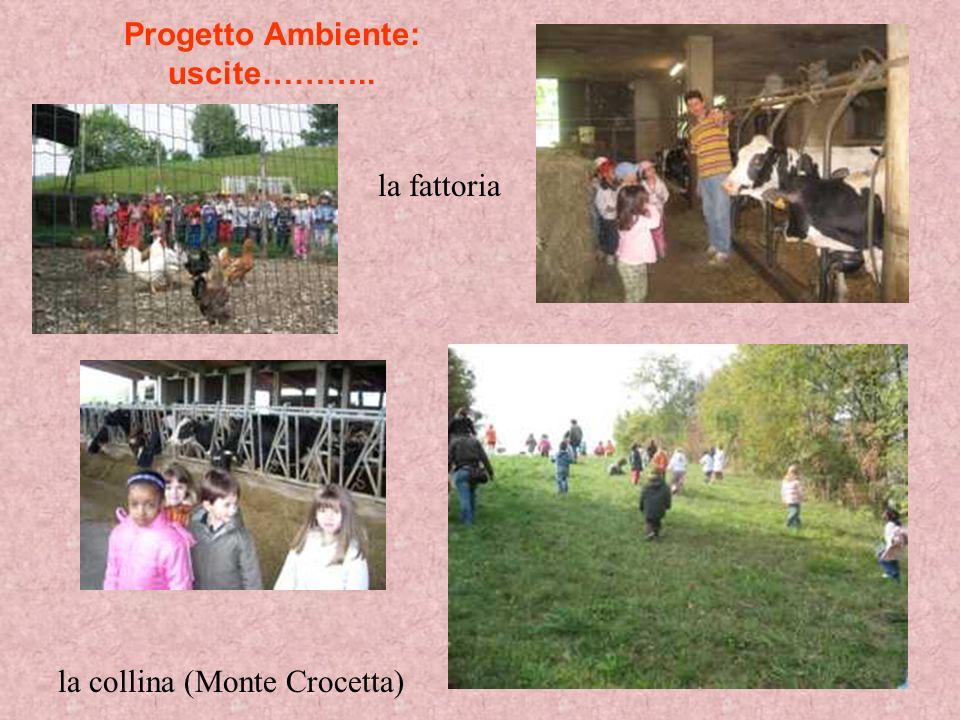 Progetto Ambiente: uscite……….. la fattoria la collina (Monte Crocetta)