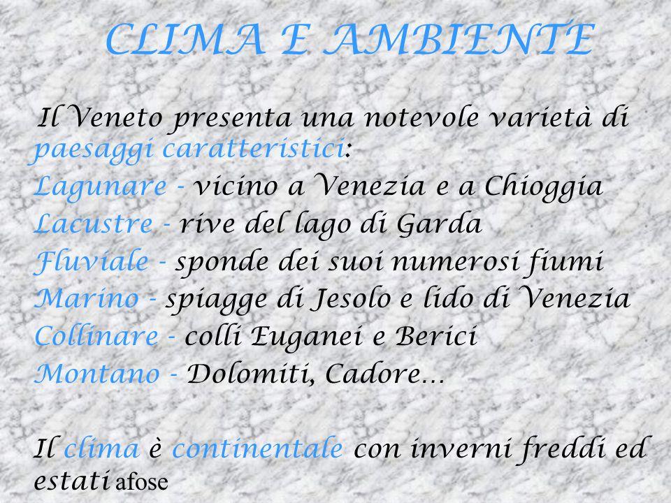 CLIMA E AMBIENTE Il Veneto presenta una notevole varietà di paesaggi caratteristici: Lagunare - vicino a Venezia e a Chioggia Lacustre - rive del lago