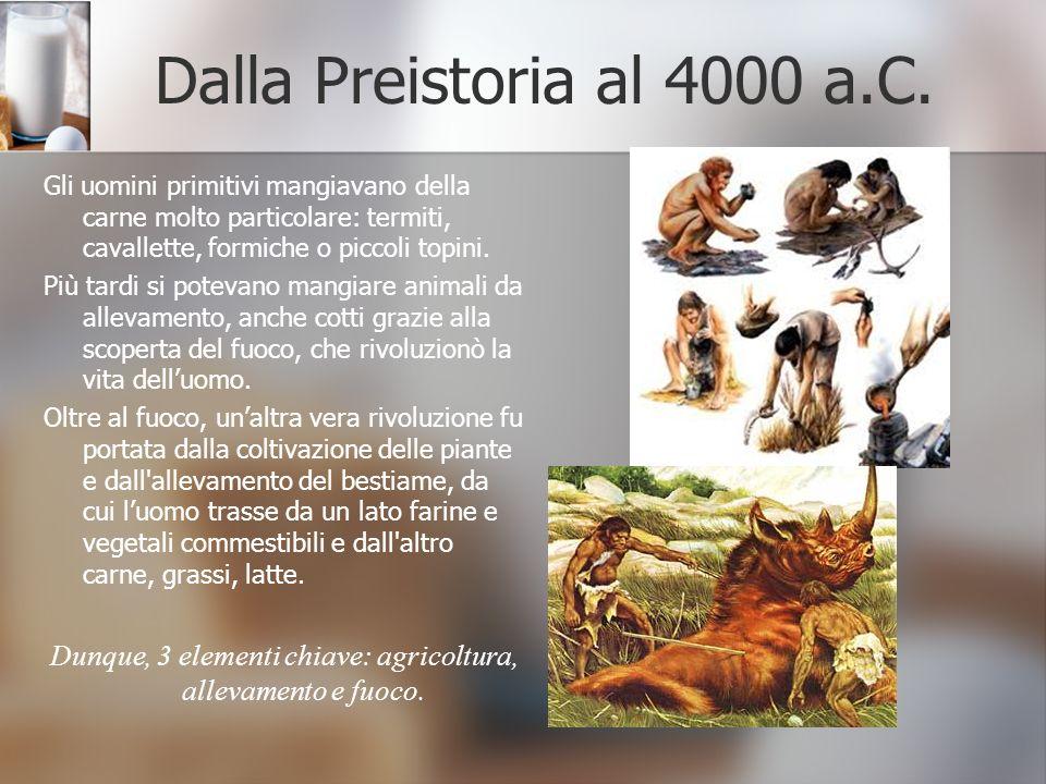 Dalla Preistoria al 4000 a.C. Gli uomini primitivi mangiavano della carne molto particolare: termiti, cavallette, formiche o piccoli topini. Più tardi