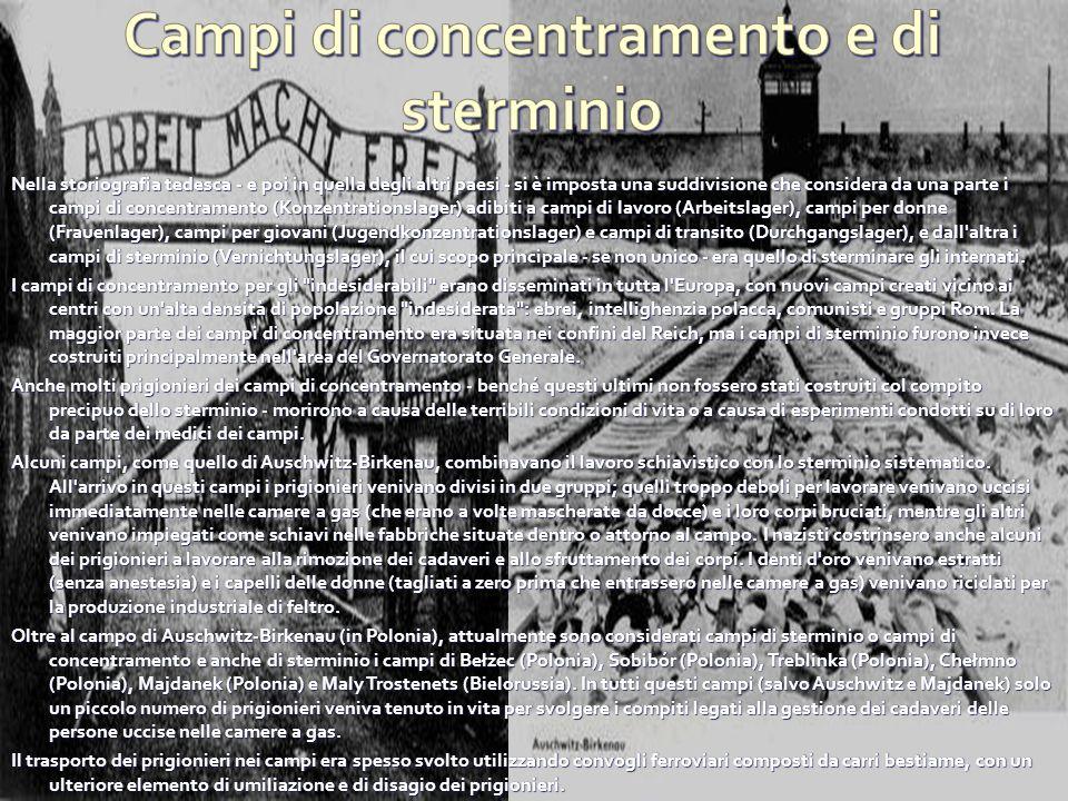 Nella storiografia tedesca - e poi in quella degli altri paesi - si è imposta una suddivisione che considera da una parte i campi di concentramento (K