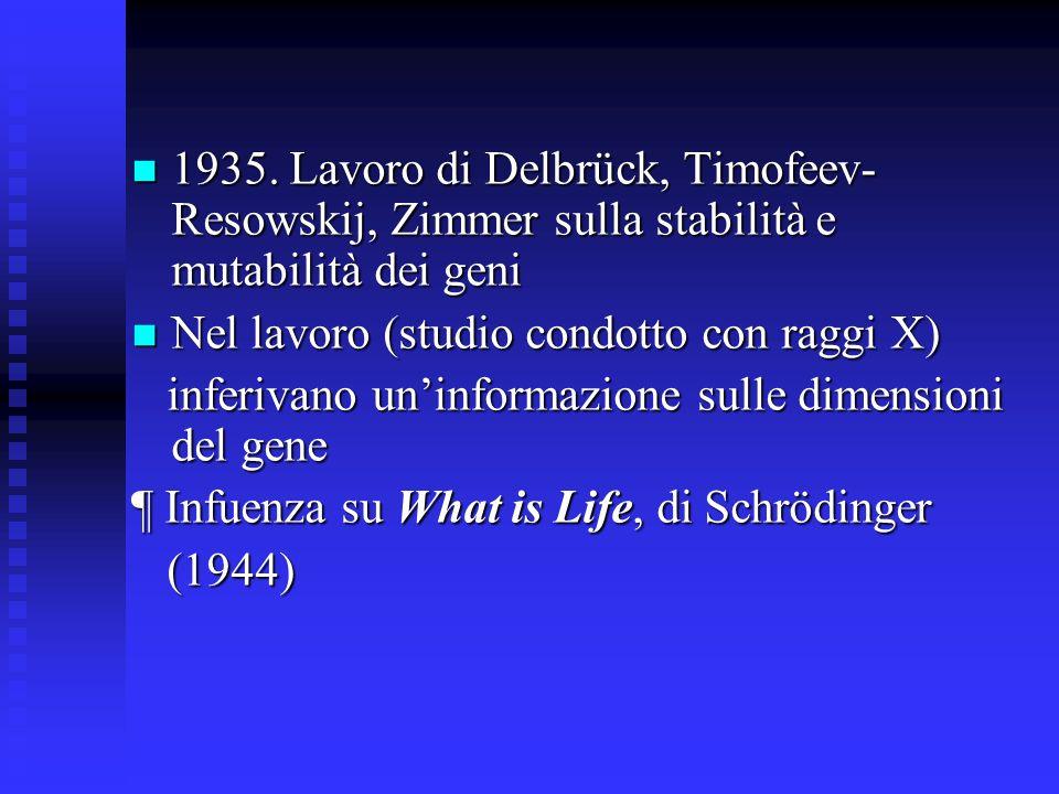 1935. Lavoro di Delbrück, Timofeev- Resowskij, Zimmer sulla stabilità e mutabilità dei geni 1935. Lavoro di Delbrück, Timofeev- Resowskij, Zimmer sull