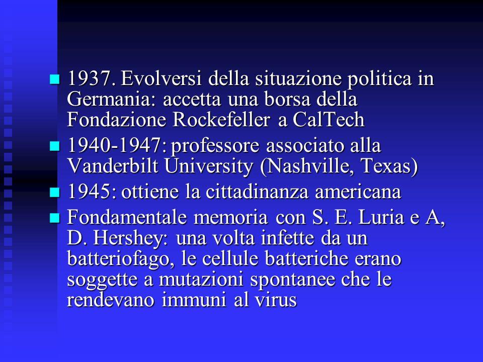 1937. Evolversi della situazione politica in Germania: accetta una borsa della Fondazione Rockefeller a CalTech 1937. Evolversi della situazione polit