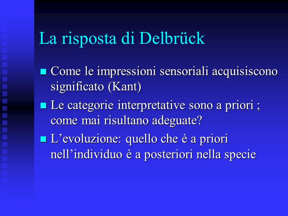 La risposta di Delbrück Come le impressioni sensoriali acquisiscono significato (Kant) Come le impressioni sensoriali acquisiscono significato (Kant)