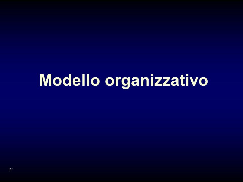 Modello organizzativo 29