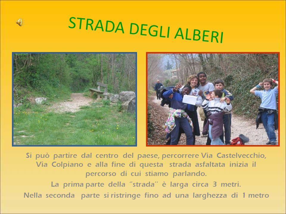 Si può partire dal centro del paese, percorrere Via Castelvecchio, Via Colpiano e alla fine di questa strada asfaltata inizia il percorso di cui stiamo parlando.