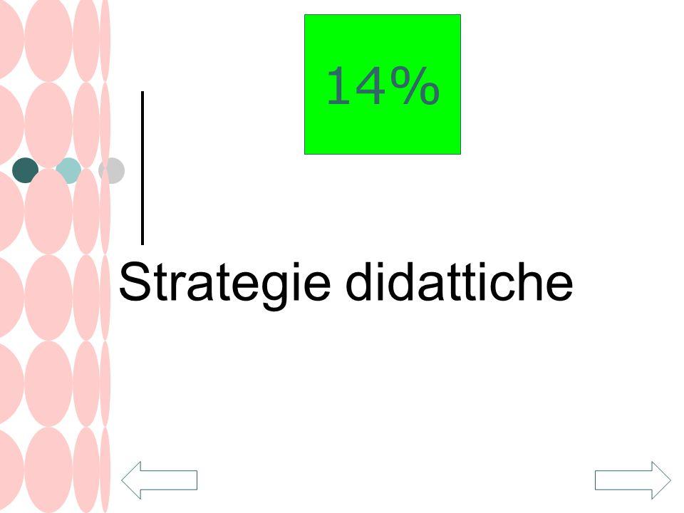 Strategie didattiche 14%