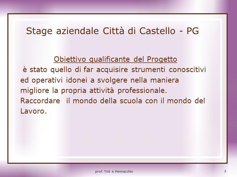 Stage aziendale Città di Castello - PG Obiettivo qualificante del Progetto è stato quello di far acquisire strumenti conoscitivi ed operativi idonei a