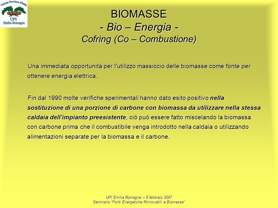 UPI Emilia Romagna – 5 febbraio 2007 Seminario Fonti Energetiche Rinnovabili e Biomasse BIOMASSE - Bio – Energia - Cofring (Co – Combustione) Una imme