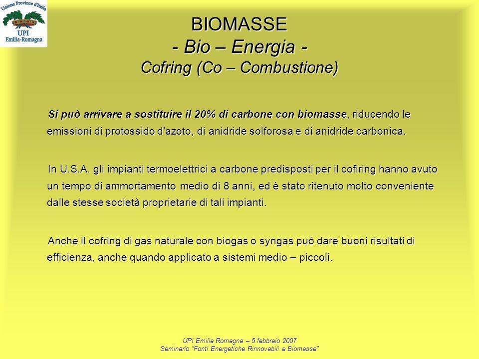 UPI Emilia Romagna – 5 febbraio 2007 Seminario Fonti Energetiche Rinnovabili e Biomasse BIOMASSE - Bio – Energia - Cofring (Co – Combustione) Si può a